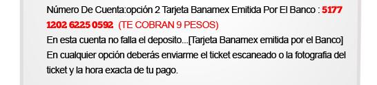 pago-banamex
