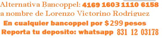 ESPECIALcoppel299